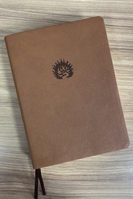 A Bíblia de Estudo da Fé Reformada - Capa Luxo Marrom e Estojo