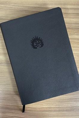 A Bíblia de Estudo da Fé Reformada - Capa Luxo Preto e Estojo